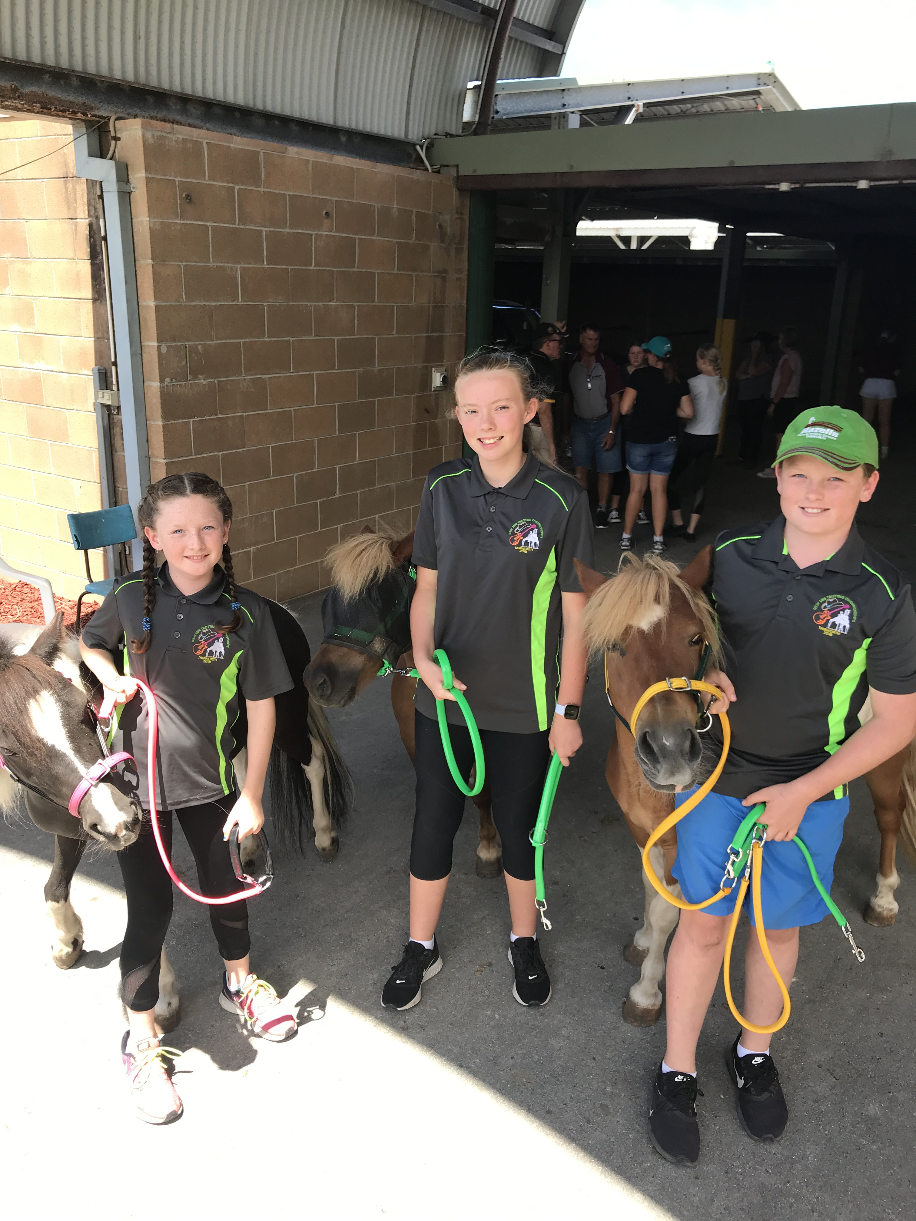 The Hunter Academy of Sport (HAS) harness racing education program kicked off last weekend with two days of seminars taking place at the HAS gym and Newcastle harness racing track.